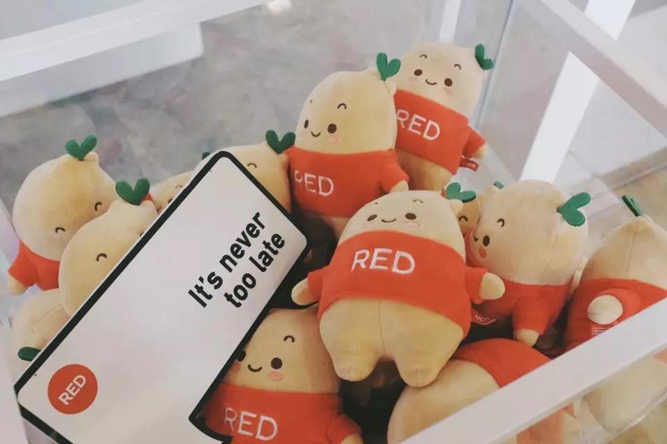 《小红书干货推广:小红书推广引流攻略》