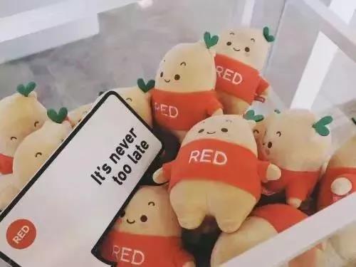 《小红书新规:20天过去了,那些小红书天台上的KOL还OK吗》