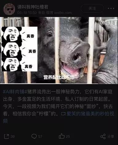 """18传播中最另类案例:京东数科借猪上位"""""""