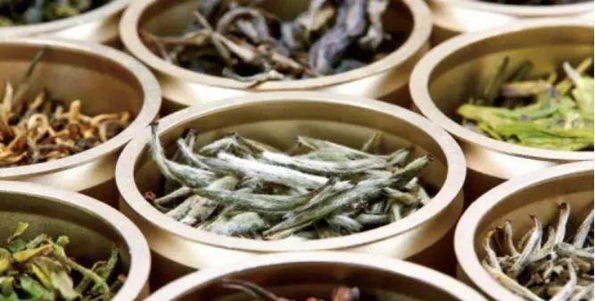 """一年卖20亿,小罐茶创始人杜国楹却说""""这很可悲"""""""