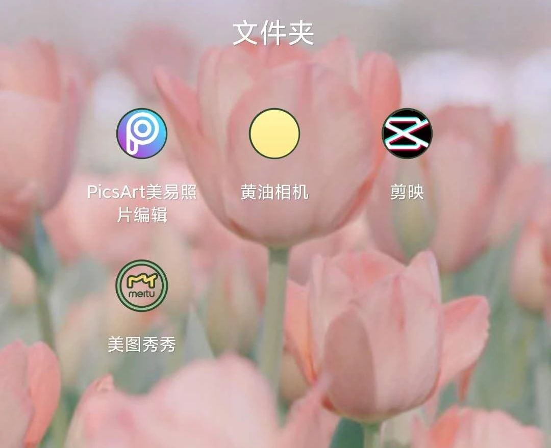 Z清欢:当小红书素人博主到底有多爽?