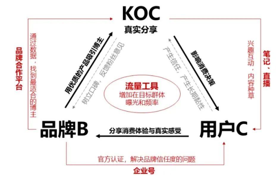 胡晓琪:小红书的本质是什么 新商业情报NBT