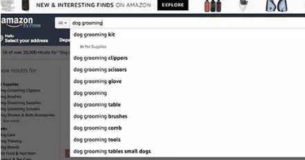 市场营销人如何通过Google挖掘有利可图的Niche关键词?