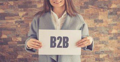 《商业增长:B2B电商20年惊变:政策鼓励 供需变革 技术更迭》